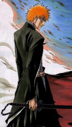 Ichigo Kurosaki, hlavní hrdina seriálu Bleach, a jeho Bankai